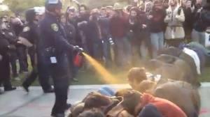 pepperspraycop