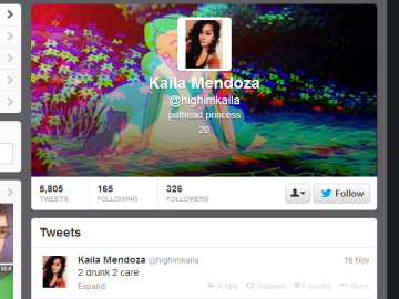 A screenshot of Mendoza's twitter page